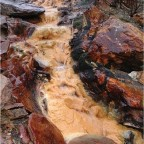 Spring Runoff Brings New Gold